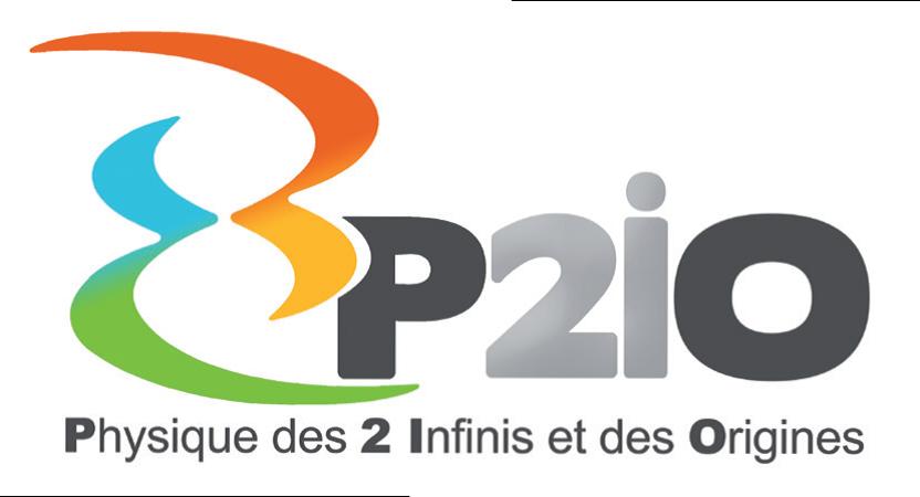 LabEx P2IO